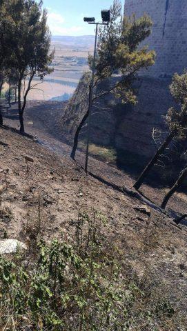 Incendio del 29 Giugno 2017